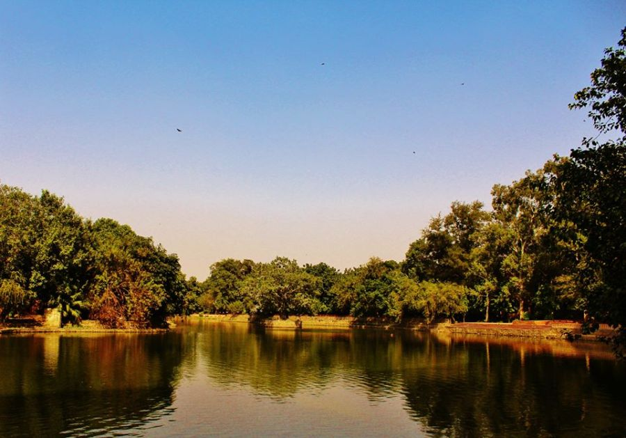 Prasad Nagar Lake