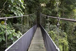 bridge-2124896_1920