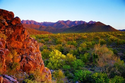 Sonoran Desert and McDowell Mountains