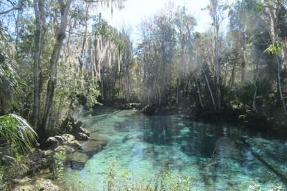 Three Sisters Springs Waters