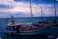 Crayboats