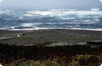 DeHaven Beach