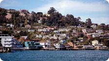 Coast of Tiburon