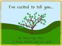 Tree Greetings