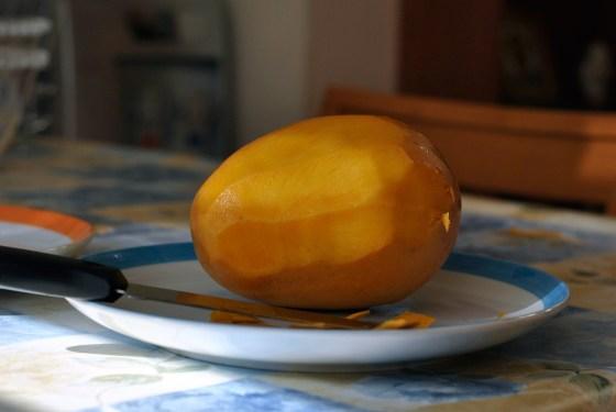 mango-tart1