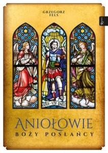Aniolowie Bozy poslancy - Aniołowie Boży posłańcyGrzegorz Fels