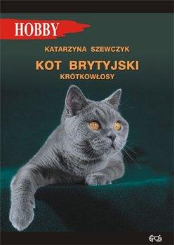 Kot brytyjski krotkowlosy - Kot brytyjski krótkowłosyKatarzyna Szewczyk