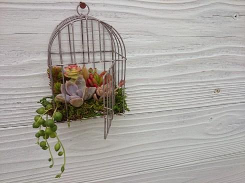 mini bird cage
