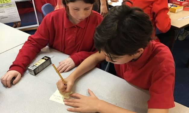 Butterfly Lions investigate the volume of cuboids…