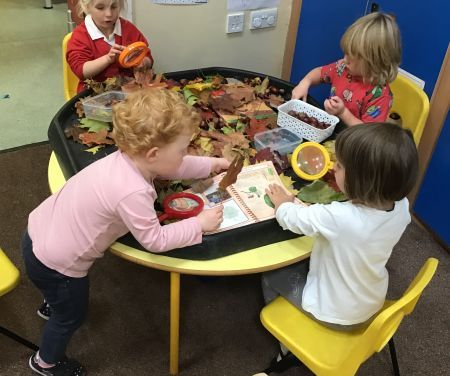Autumn Learning in Nursery