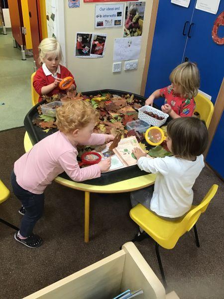 Autumn Learning in Nursery