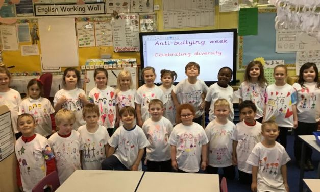 Anti-bullying week – Celebrating diversity