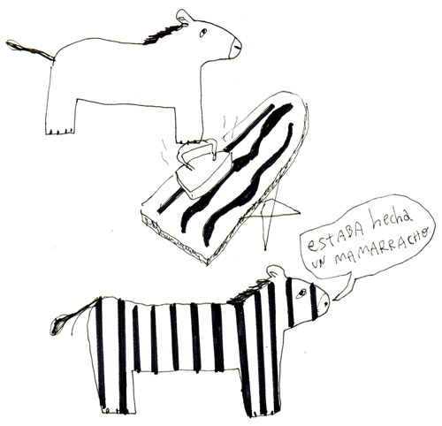 zebra-mamarracha