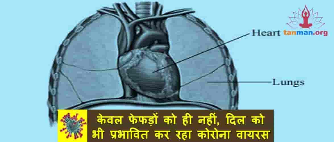 केवल फेफड़ों को ही नहीं, दिल को भी प्रभावित कर रहा कोरोना वायरस