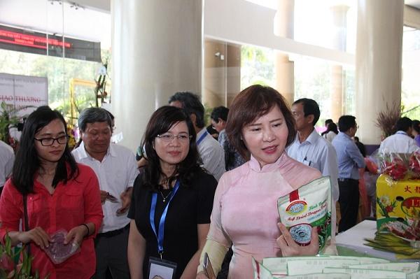 Hội nghị xúc tiến Thanh long tại Bình Thuận