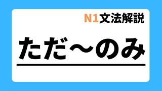N1文法解説「ただ~のみ」