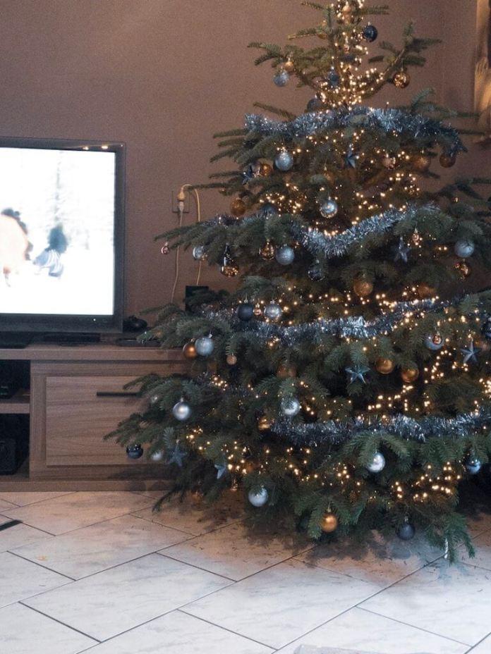 Dag Sinterklaas en hallo Kerst onze kerstboom