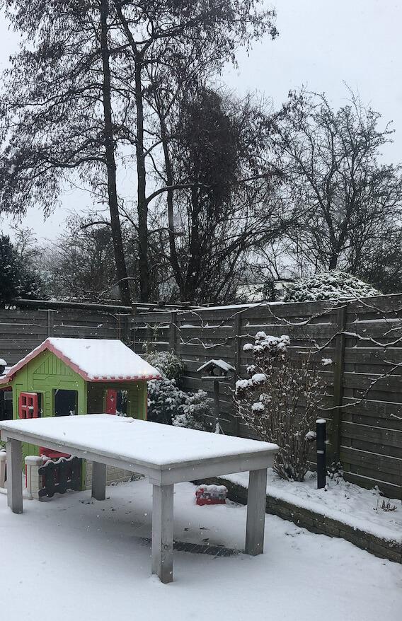 De eerste sneeuwvlokken