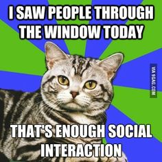 saw people thru the window...enough social interaction for today...