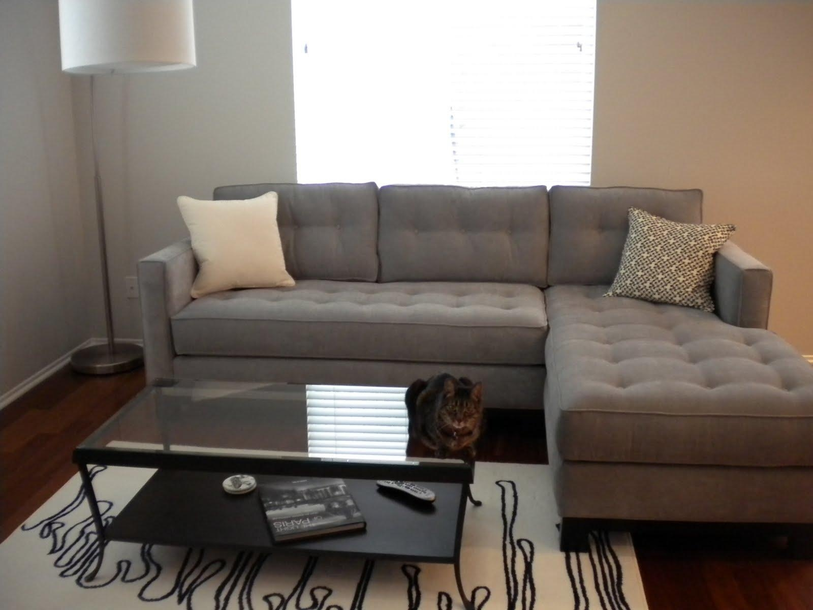sectional sofas for apartments eco friendly california 15 43 choices of apartment sofa with chaise