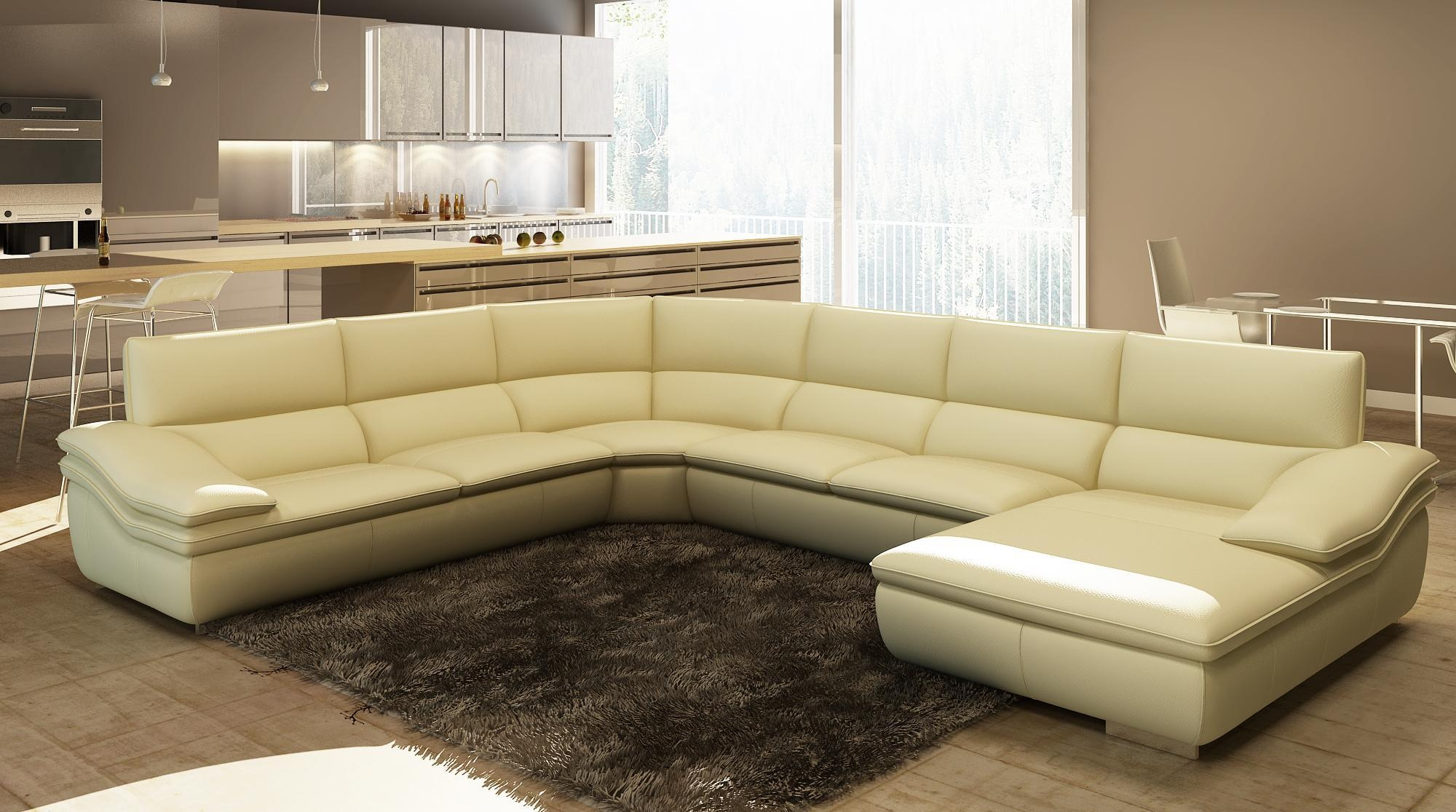 u shaped sofa leather inflatable chair 20 ideas of sectional