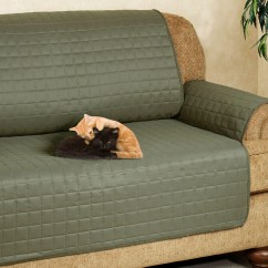 Cat Sofa Arm Covers Brown Leather Accent Pillows 20 Best Collection Of Proof Sofas Ideas