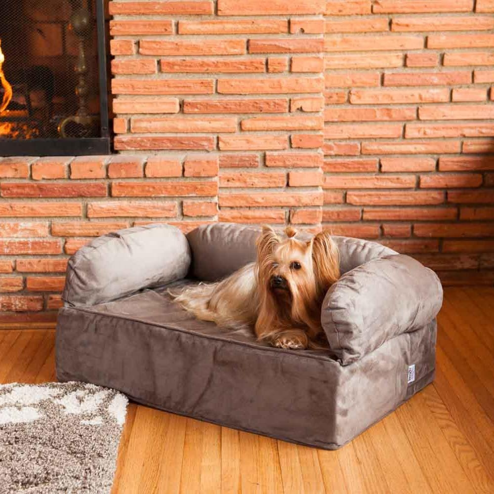 jetton sofas tufted leather sofa with chaise 20+ choices of dog and chairs | ideas