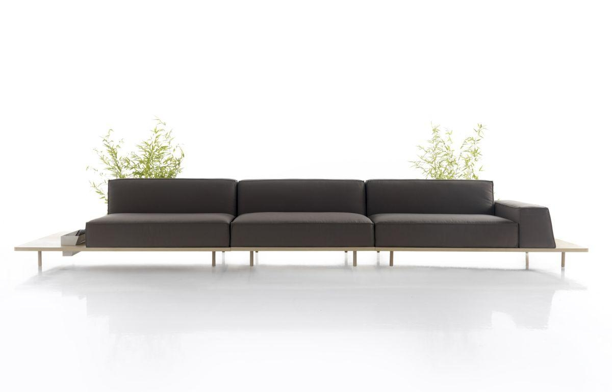 clic design sofa pink tufted for sale simple sofas free shipping sigle modern