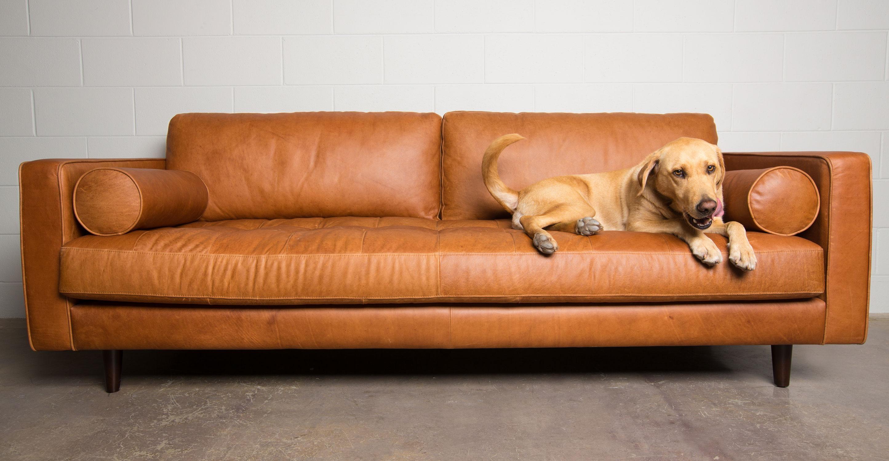 caramel colored leather sofas bernhardt sofa colors 20 ideas of