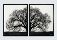 20 Best Collection of Black and White Framed Wall Art ...