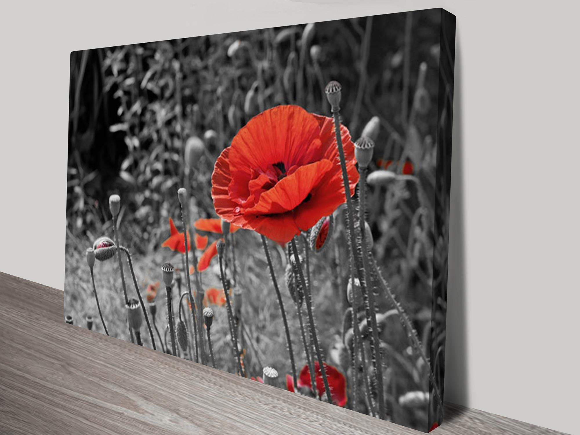 20 Collection Of Red Poppy Canvas Wall Art