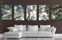 20 Collection of Aspen Tree Wall Art