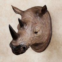 20 Ideas of Resin Animal Heads Wall Art | Wall Art Ideas
