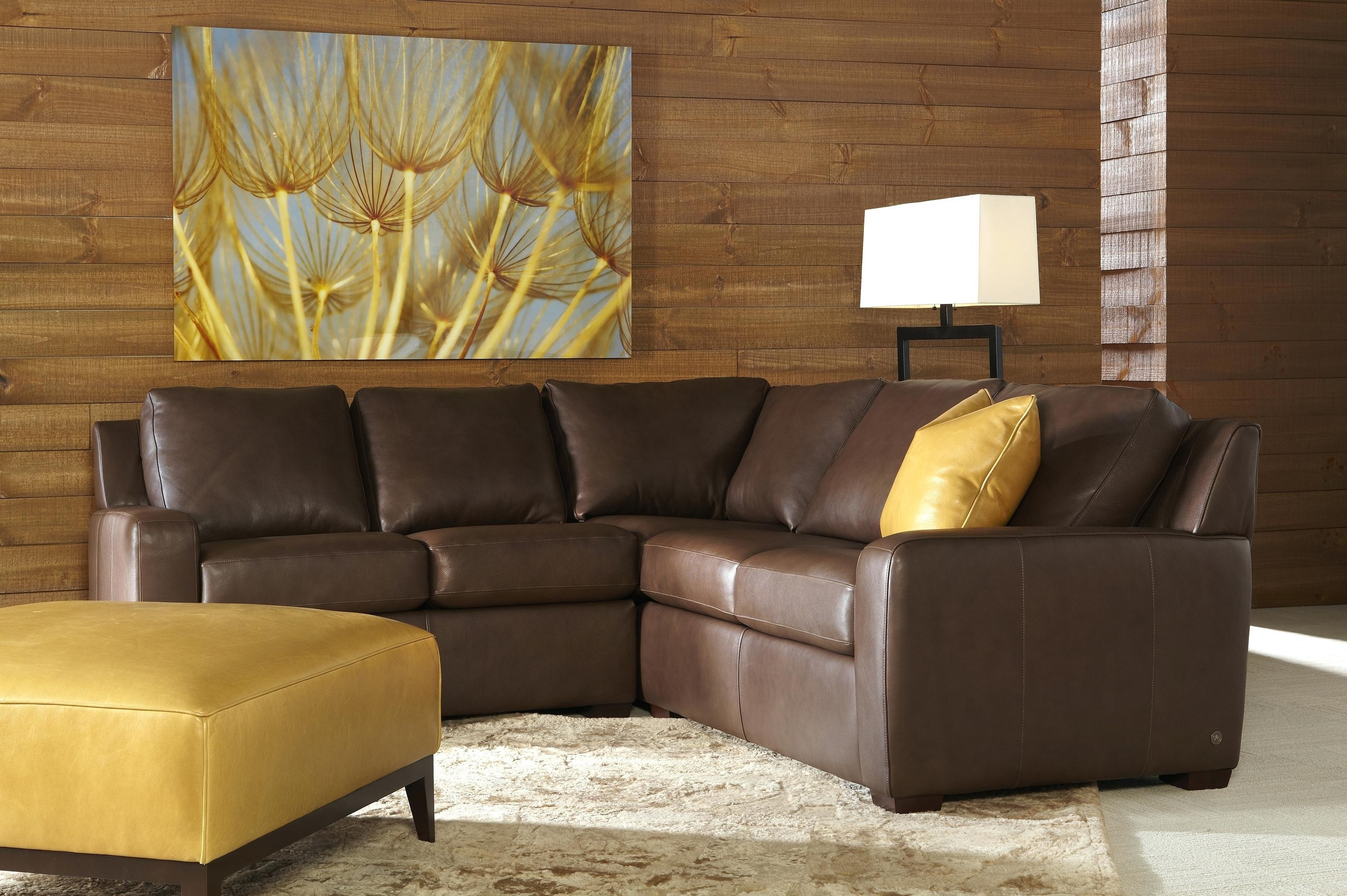 dania sofa bed surefit slipcovers for sleeper 21 ideas of leather storage sofas |
