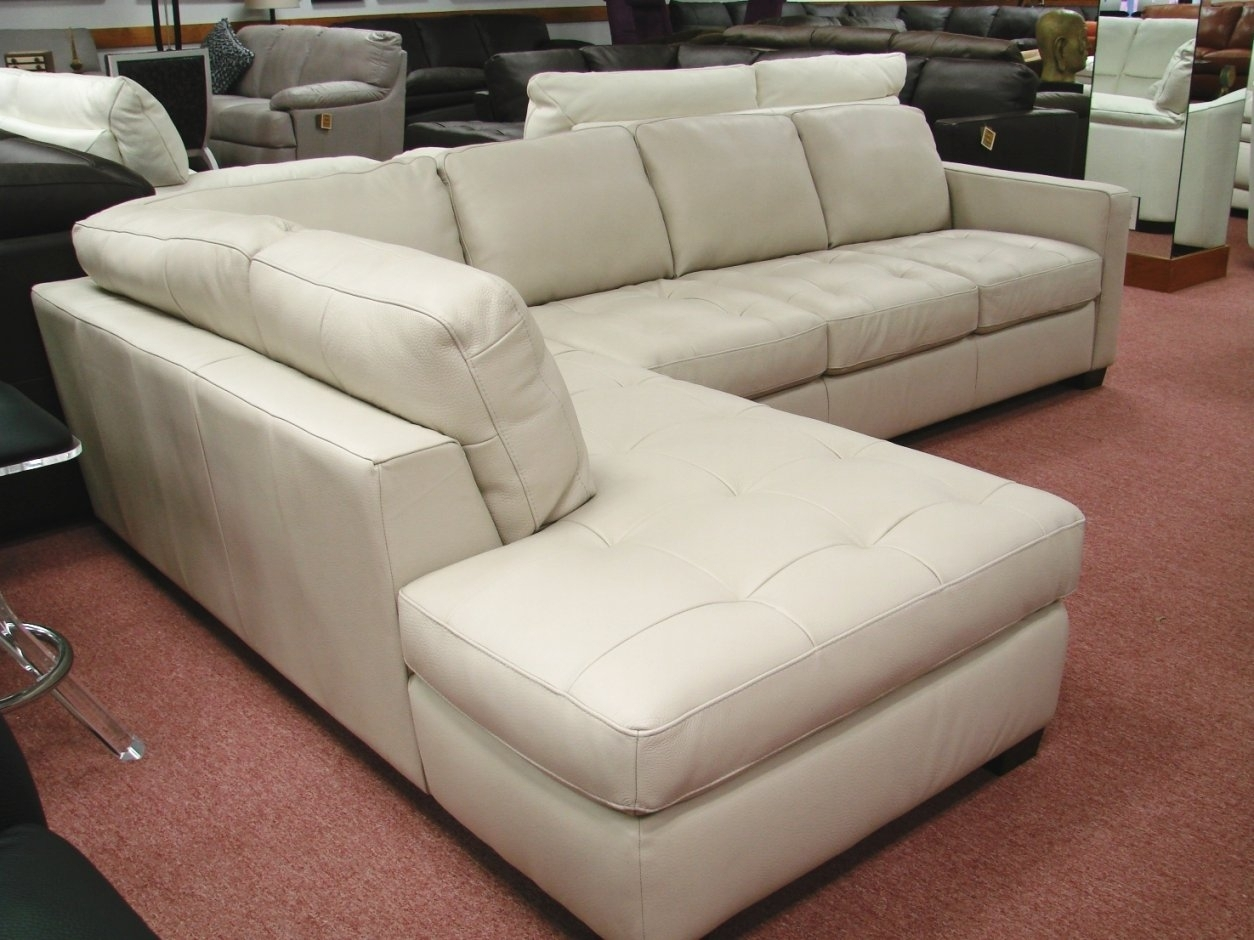 natuzzi sectional sofa connectors cream color leather 10 ideas of sofas