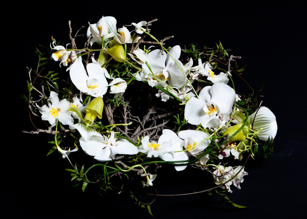 Floral design on black backdrop