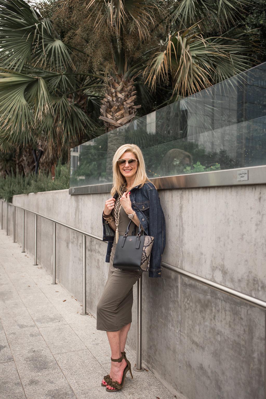 Tanya Foster blog, James Perse Dress, Nordstrom sale, Coach bag, denim jacket