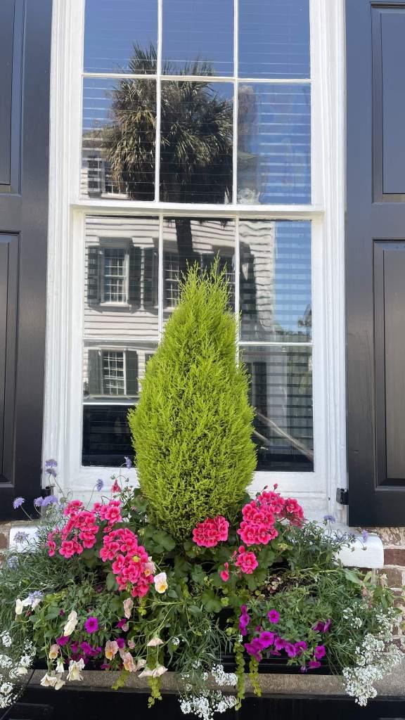 Charleston window with flowers