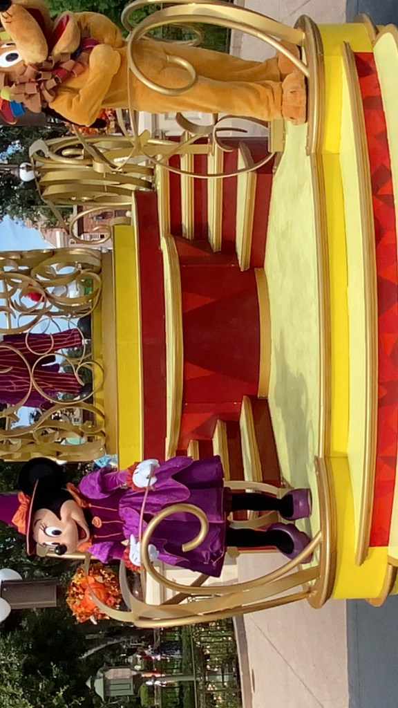 Disney World Cavalcades