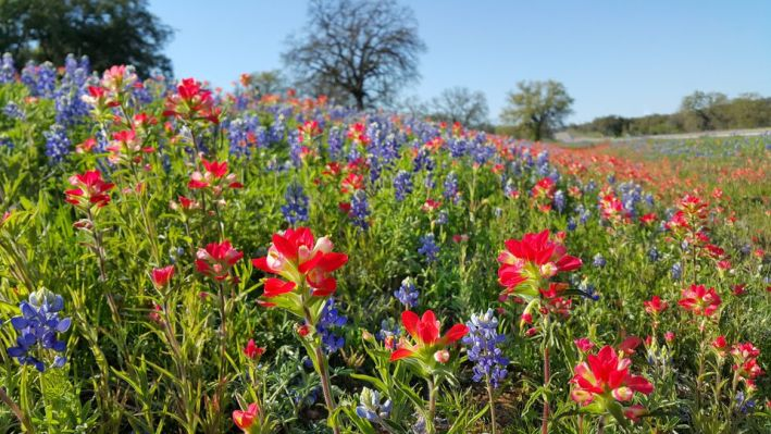 Discover the Texas Hill Country | Where To Stay & What To Do