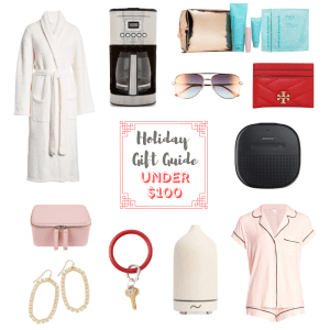 gift guide gifts under $100