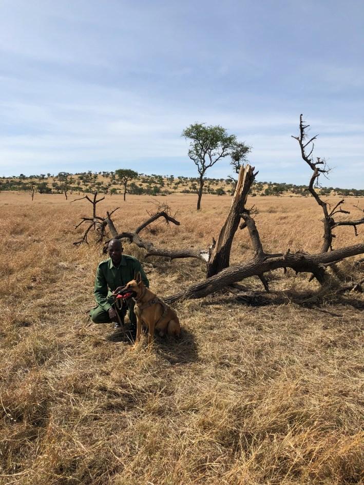 Take an African safari with a purpose by working with the Singita Grumeti Fund in the Serengeti