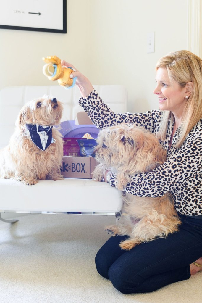 Tanya Foster playing with toys with her dogs from BarkBox
