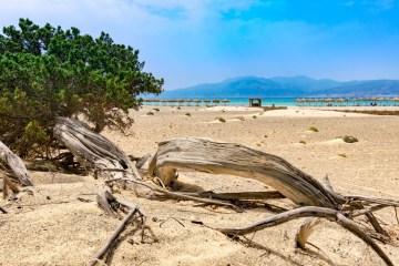 Chrissi island - a secret travel sanctuary