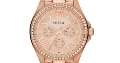 Fossil AM4483 Cecile Multifunction Stainless Steel Women's Wrist Watch at ebay.in