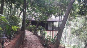 Our detox holiday at Meriyanda Nature Lodge, Coorg. Photo Credit: Poyani Mehta