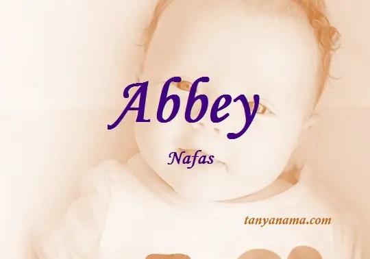 arti nama Abbey