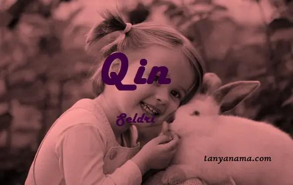 arti nama Qin