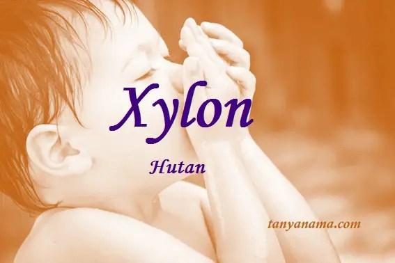 arti nama Xylon