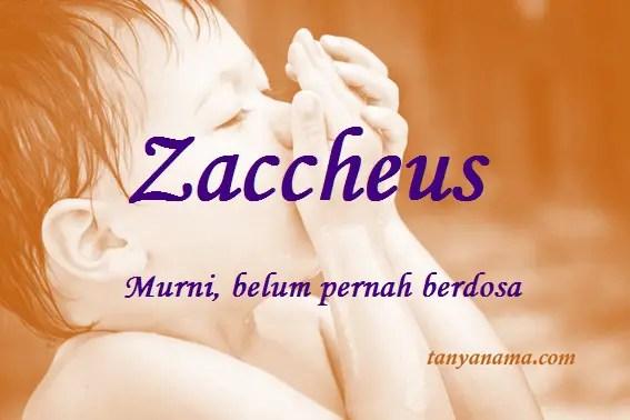 arti nama Zaccheus